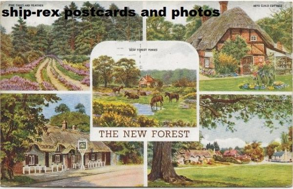 New Forest, multi-view postcard (a)
